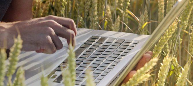 Ryzyko finansowe branży rolnej